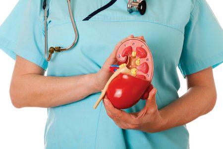 какой должна быть диета ребенка при заболевании почек диета ребенка при заболевании почек