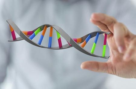 Как определить синдром Дауна во время беременности синдром Дауна время беременности