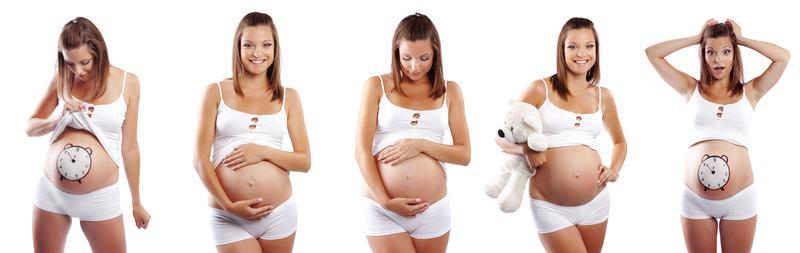 Краткий календарь беременности с 1 по 42 неделю Краткий календарь беременности с 1 по 42 неделю