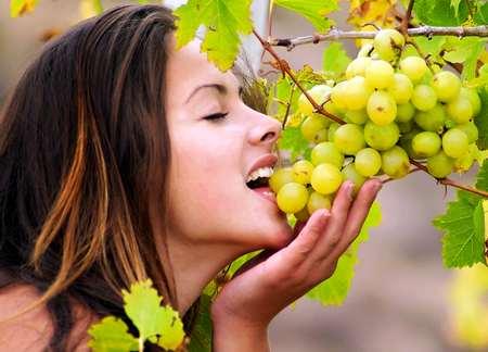 Целебные свойства вина целебные свойства вина