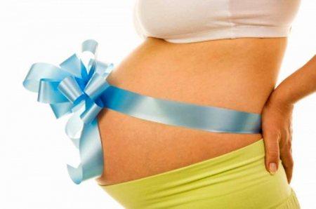Что ожидать желающим стать суррогатными матерями и донорами ооцитов Что ожидать желающим стать суррогатными матерями и донорами ооцитов