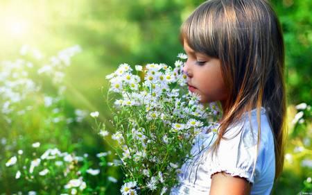 Почему необходимо дышать через нос почему необходимо дышать через нос