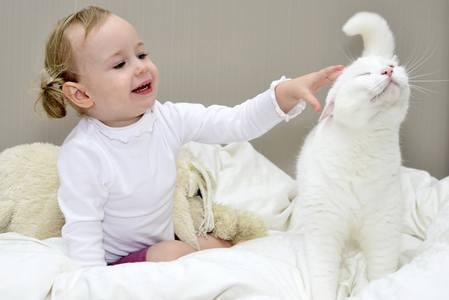 Как узнать, какого домашнего питомца завести для ребенка? какого домашнего питомца завести для ребенка