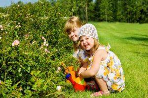 Ребёнок как цветочек