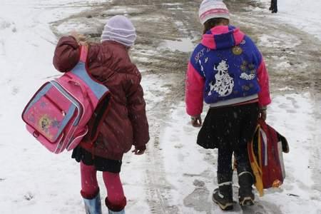 Сколько весит школьный багаж ученика? школьный багаж