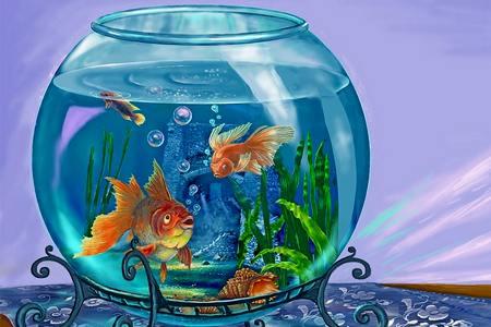 Домашние питомцы - аквариумные рыбки для детей аквариумные рыбки для детей