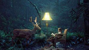 Любят ли читать ваши дети?